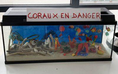 Coraux-en-danger-400x250